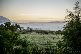 A pair of horses grazing in a field, trees just visible through early morning mist lying in a valley surrounded by mountains at sunrise.