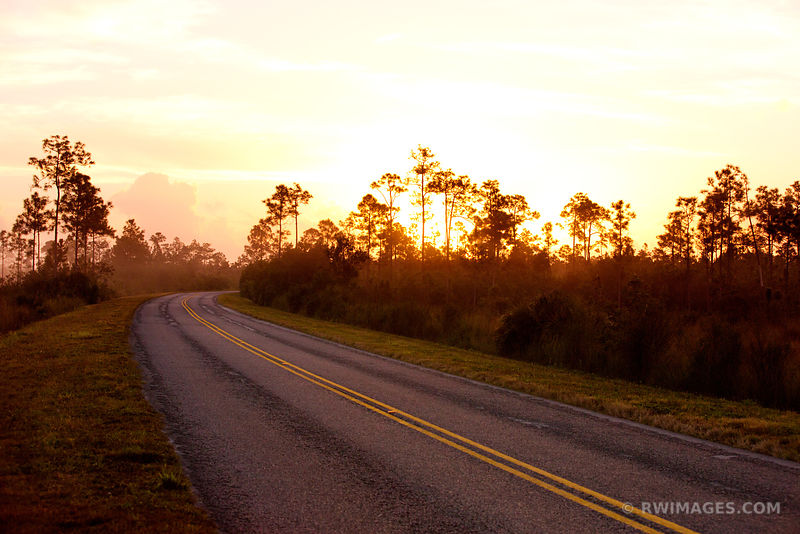 ROAD AT DAWN IN EVERGLADES NATIONAL PARK FLORIDA