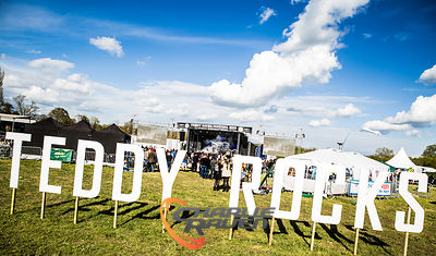 Teddy Rocks Festival 2016 photos