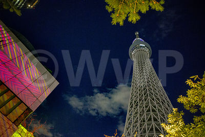 Skytree by Night Art Photographs
