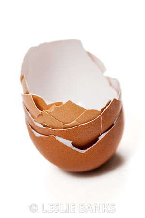Stacked Eggshells