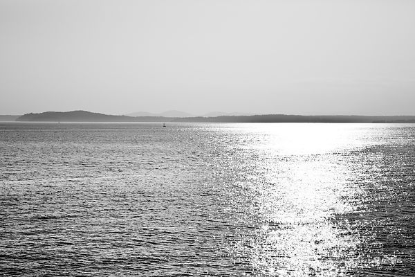 PUGET SOUND SEATTLE BLACK AND WHITE