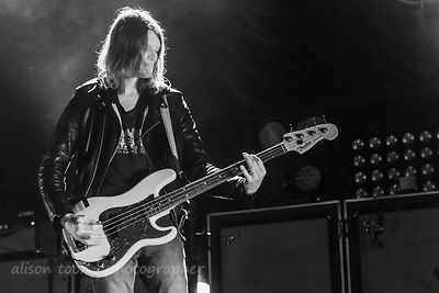 Daniel Tichenor, bass, Cage The Elephant