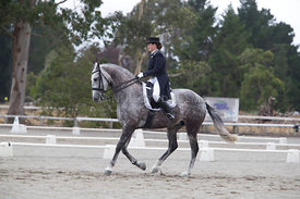 SI_Festival_of_Dressage_300115_Level_6_NCF_0166