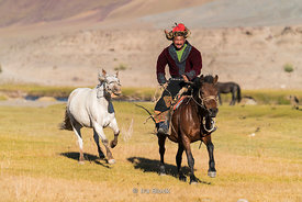 A Kazakh eagle hunter with his horses near the village of Bayan in western Mongolia.