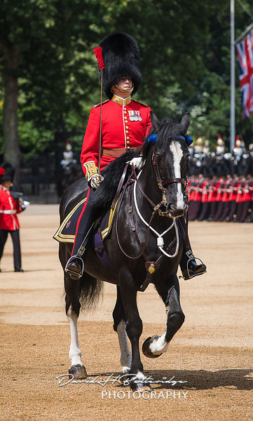 Trooping_the_Colour_8758