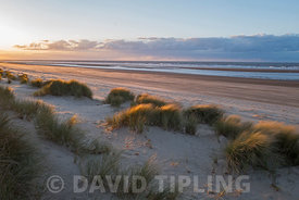 Sand dunes and beach, Holkham National Nature Reserve, North Norfolk
