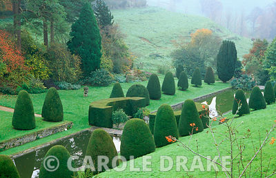 The Canal Garden with lines of sharply clipped yews at Mapperton Garden, Dorset