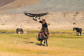 A Kazakh eagle hunter riding a horse near the village of Bayan in western Mongolia.