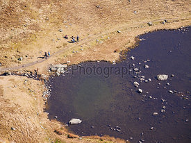 Aerial view of Bowscale Tarn with hikers, walkers relaxing beside it in the English Lake District, UK.