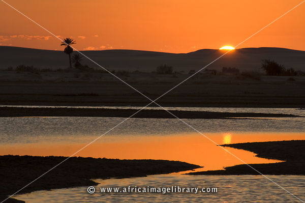 lake Siwa at sunset, the Great Sand Sea, Western desert, Siwa oasis, Egypt