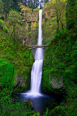 Along Oregon's historic Highway 30 is this feature, Multnomah Falls. As you enter the place, its dreamy mood immediately caught me, casting a fairy, magical feel to the mood. It was really like being in a dream. I stared and stared, soaking in its magnificence. Once I gained a grasp of its enormity, I setup for this shot. I blasted off a series of shots, wiping the lens from water between each one, hoping to catch the scene without any water sports. I was successful with this single exposure. 