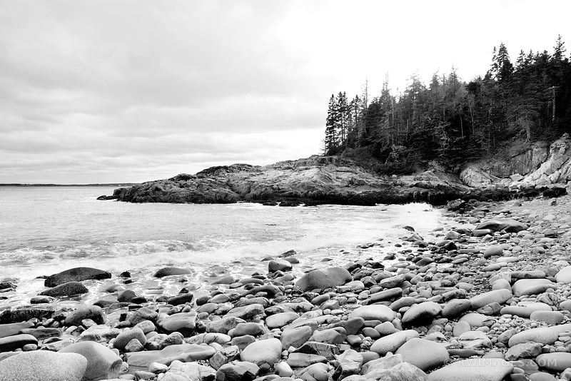 OTTER POINT ACADIA NATIONAL PARK MAINE BLACK AND WHITE