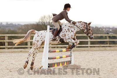 Show Jumping photos