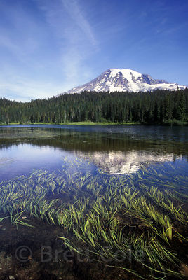 Reflection Lake and Mount Rainier, Washington.
