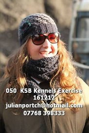 050__KSB_Kennels_Exercise_161212