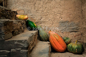 Pumpkins, China