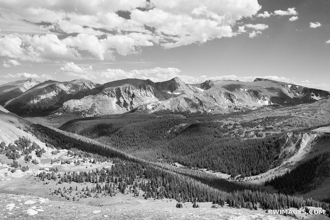 Photo print of forest canyon rocky mountain national park for Photography prints to buy