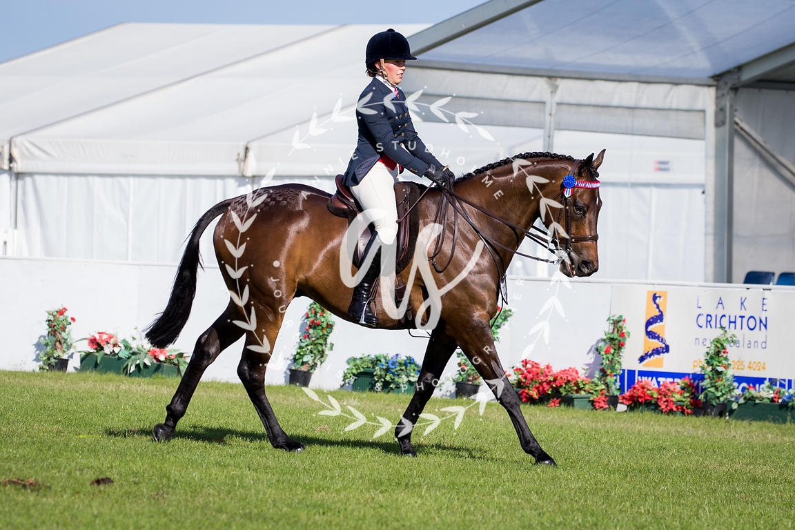 NZ_Ag_Show_2018_fri_-4915