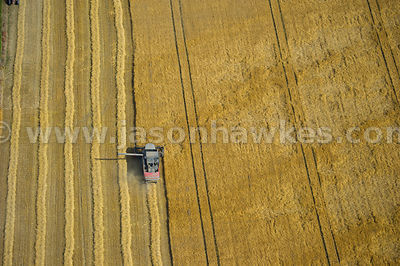 Aerial view of farming