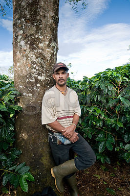 Coffee Workers - Costa Rica photos