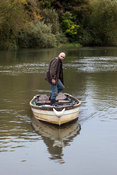 UK - Abingdon - Bob Ring, 57, known as Crayfish Bob trapping American crayfish in the River Thames