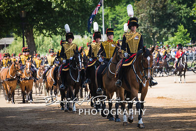 Trooping_the_Colour_8825