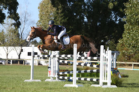 NZ_Nat_SJ_Champs_080215_1m10_pony_0104
