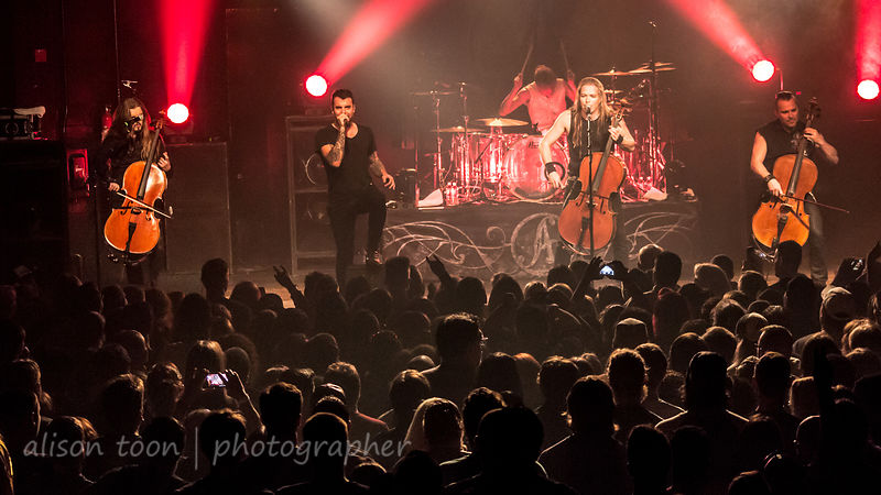 Adam Gontier with Apocalyptica