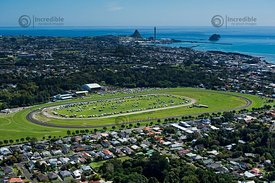 New Plymouth Racecourse