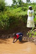 Young boy getting water out of a muddy river for use  as drinking water. Kenya.