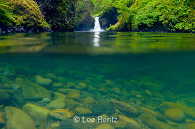 Split Underwater and Above Water View of Punchbowl Falls
