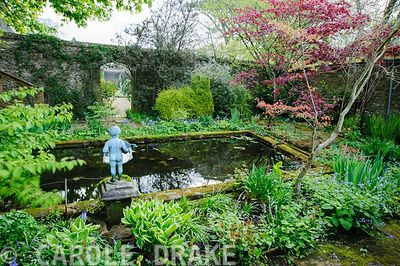 Pond garden planted with acers, ferns and hostas around a formal pool, with putto. Wayford Manor, Wayford, Crewkerne, Somerset, UK