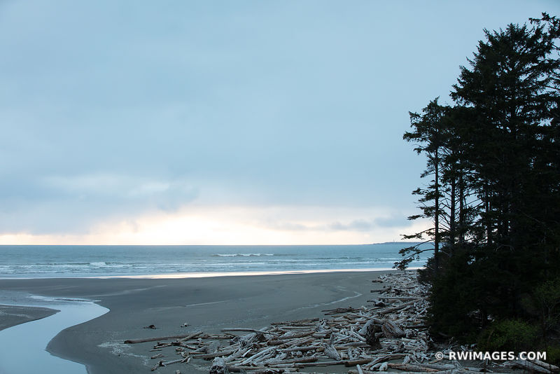 KALALOCH BEACH OLYMPIC NATIONAL PARK WASHINGTON PACIFIC NORTHWEST COAST