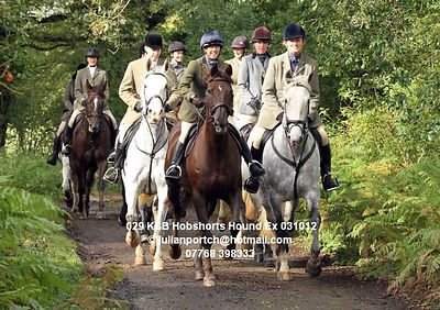 2012-10-03 KSB Hobshorts Farm Hound Exercise photos