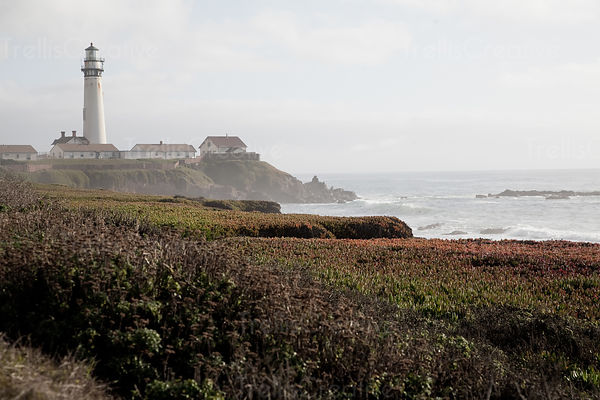 Pigeon Point Lighthouse at Ano Nuevo State Reserve, USA