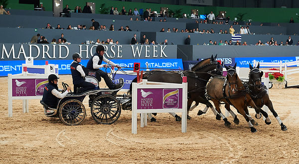 Boyd Exell, (AUS) during CAI-W Trofeo Vitaldent competition at Madrid Horse Week at IFEMA, Madrid - Spain