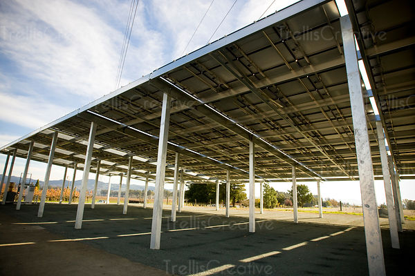 Solar panels provide clean energy at a winery