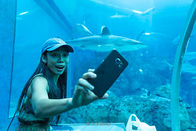 A tourists takes a selfie at the Underwater World in Sentosa island, Singapore