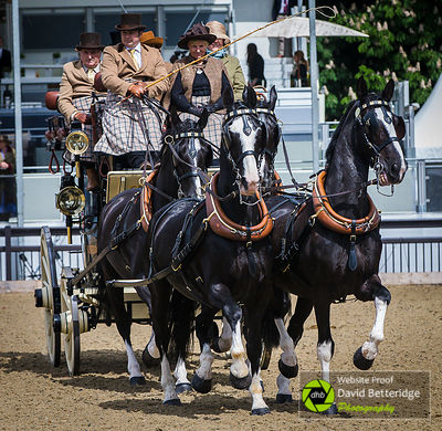 Royal_Windsor_Horse_Show_2017_017