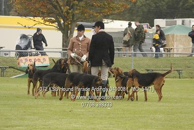 2008-10-04 KSB Ardingly Hound Parade photos