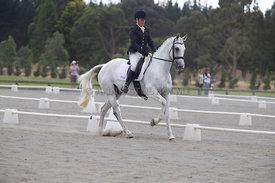 SI_Festival_of_Dressage_300115_Level_4_JLT_0123