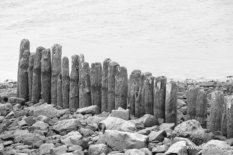 MOSSY WOODEN FENCE LA PUSH WASHINGTON BLACK AND WHITE