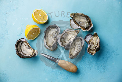 Open Oysters and lemon on blue background