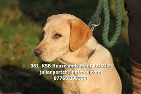 061__KSB_Heaselands_Meet_021212