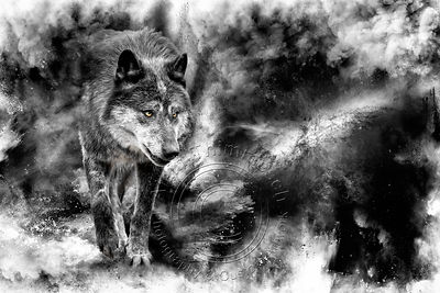 Art-Digital-Alain-Thimmesch-Loup-13