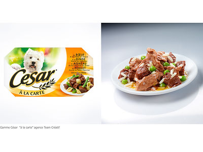 PET-FOOD photos