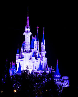 Disney-Cinderella-Castle-Night-White-6231475