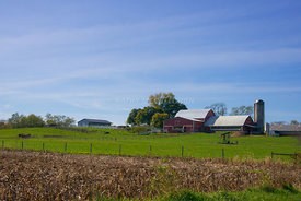 Amish_farm_in_Ohio-2