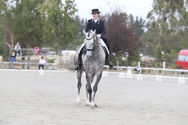SI_Festival_of_Dressage_310115_Level_6_7_MFS_0842